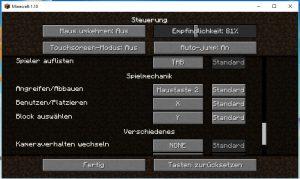 Screenshot von den Steuerungseinstellungen