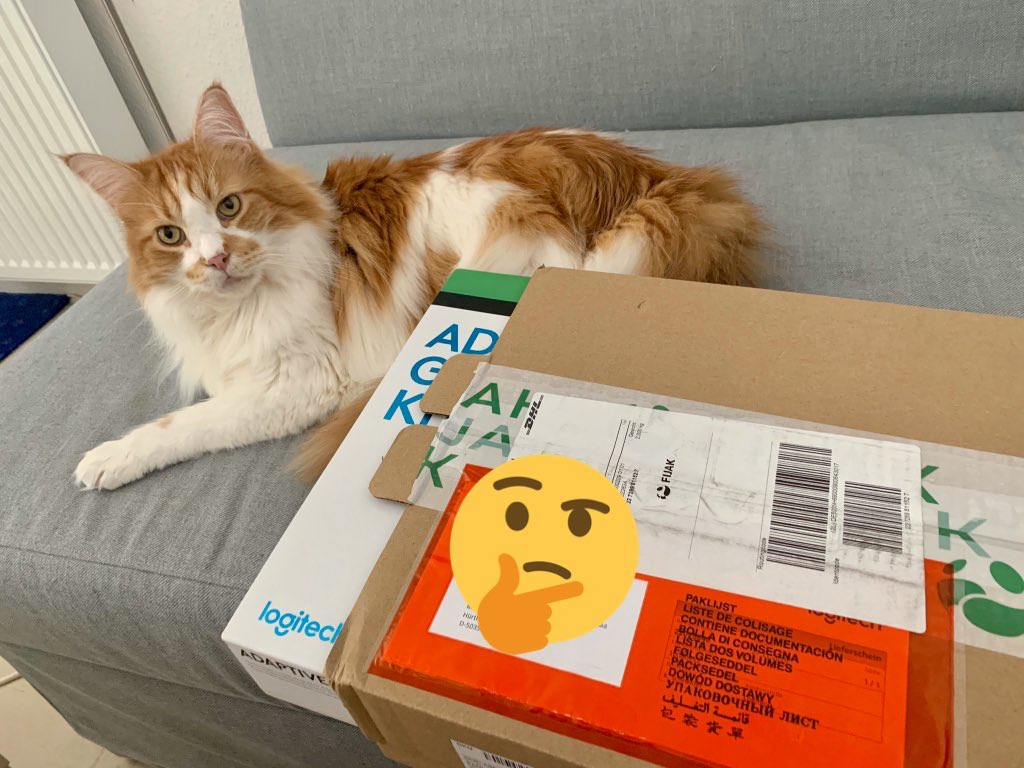 Ein Kater liegt neben einem Versandkarton auf der Couch und schaut in die Kamera. Aus dem Karton ragt ein Stück eines weiteren Kartons heraus. Kenner ahnen, dass es die Verpackung des Logitech Adaptive Gaming Kit ist.